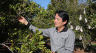 Ông Nguyễn Đức Hưởng bất ngờ xin miễn nhiệm tại LienVietPostBank