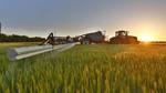 Có thể ứng dụng IoT vào trồng lúa, chăn bò?