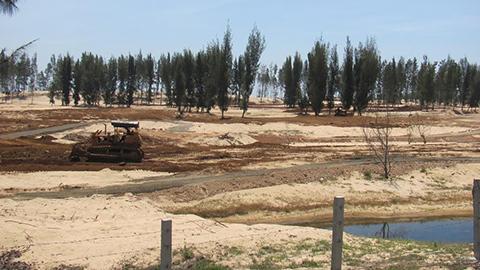 Thủ tướng yêu cầu làm rõ vụ phá rừng phòng hộ tại Phú Yên