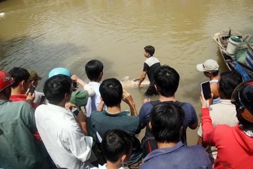 Bắt được 'quái ngư' trên sông Đồng Nai, bán gần trăm triệu