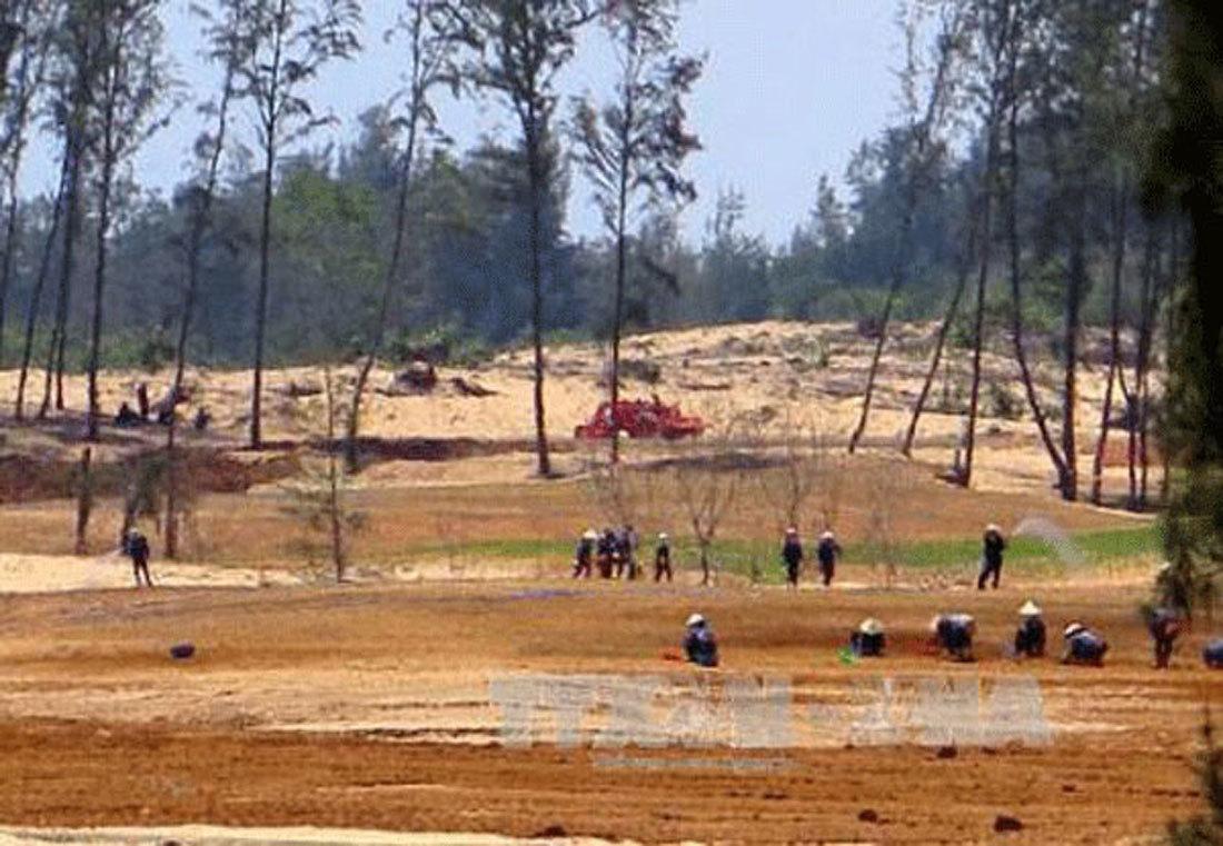 Phú Yên, phá rừng, Thủ tướng Nguyễn Xuân Phúc,