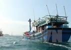Tàu cá bị tàu nước ngoài đâm chìm, một người tử vong