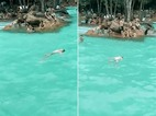 Cậu bé bị đuối nước trước hàng trăm người nhưng không ai biết