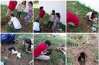 Hành động nhân văn của nhóm bạn trẻ giải cứu 9 chú chó hoang