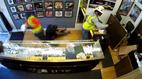 Cướp táo tợn tấn công cửa hàng đồ trang sức
