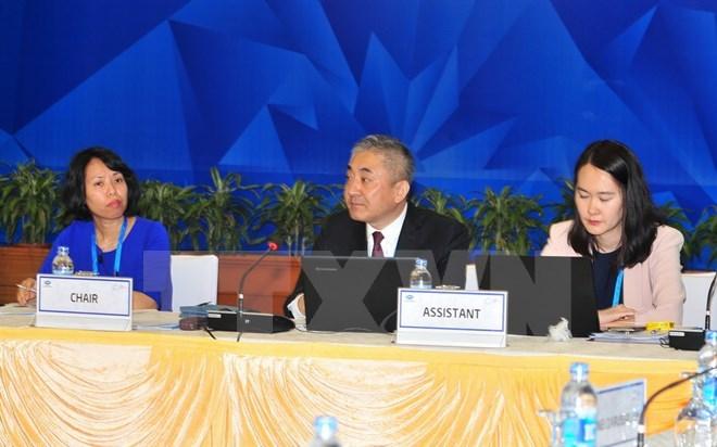 APEC 2017, APEC Việt Nam 2017