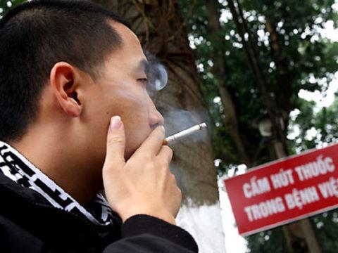 thuốc lá, hút thuốc lá, ung thư phổi, bệnh tim mạch, tế bào ung thư, ung thư di căn