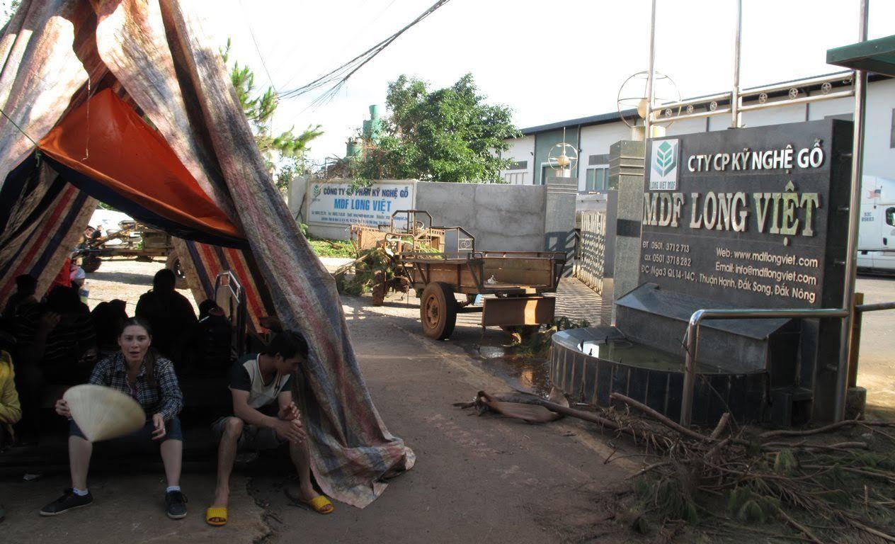 Dựng lều, vây nhà máy gỗ vì ô nhiễm