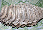 Phát hiện bộ xương kỳ lạ, nghi của loài động vật khổng lồ