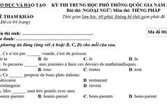 Đề thi tham khảo môn Tiếng Pháp kỳ thi THPT quốc gia 2017