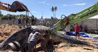 Cá voi 15 tấn dạt vào biển Mũi Né