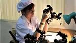 Kính quan sát cho biển đảo giành giải sáng tạo khoa học công nghệ VN