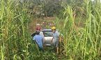 Ôtô 'điên' gây tai nạn liên hoàn, 6 người thương vong