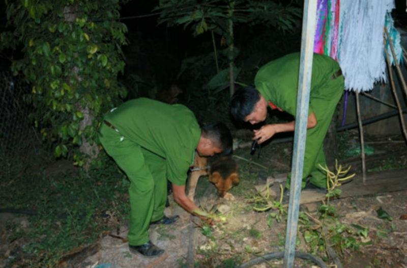 tấn công, gây thương tích, bắt nghi can đâm người trên phố, truy sát ở Sài Gòn, truy sát