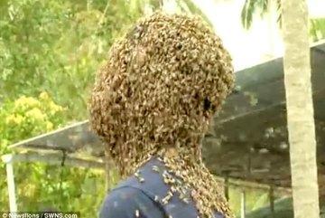 Chàng trai dũng cảm để hàng vạn con ong bu kín mặt