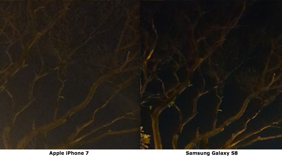 galaxy s8, iphone 7,