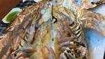 Nhậu con bọ biển khổng lồ, xẻ thịt cá trắm đen 45 triệu