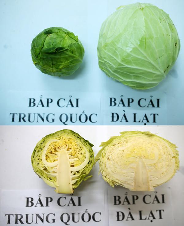 rau củ Trung Quốc, rau củ Đà Lạt, thực phẩm sạch