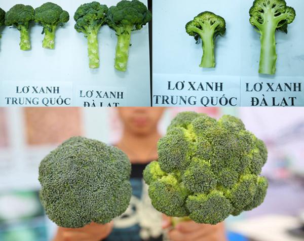 Cách phân biệt rau củ quả Trung Quốc và Đà Lạt