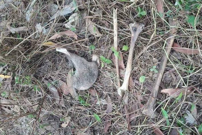 Giết người tình, bỏ vào túi nilon phi tang xác tại khu du lịch