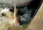 Sư tử biển bất ngờ lôi tuột bé gái xuống nước gây khiếp sợ