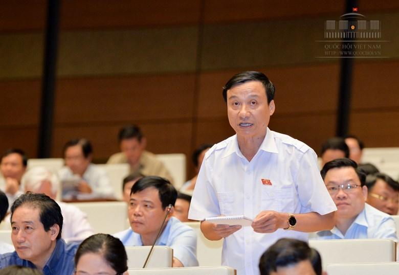 bôi nhọ lãnh đạo, Nguyễn Thị Xuân, bộ luật Hình sự