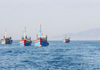Indonesia đã thả phần lớn ngư dân Việt Nam