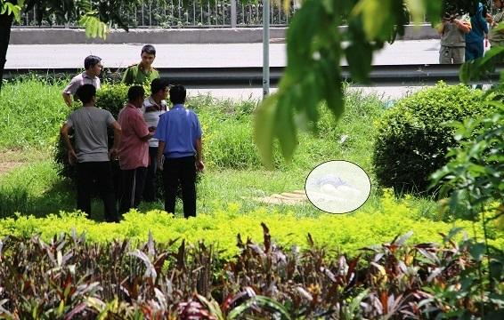 Thông tin bất ngờ vụ phát hiện xác chết ở công viên ven quốc lộ