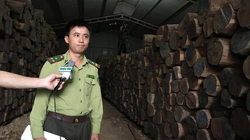 Ứ đọng hàng ngàn tấn gỗ trắc, gỗ hương