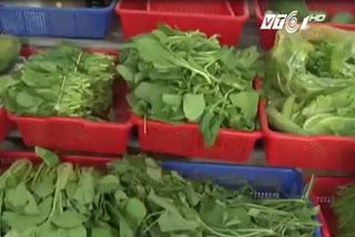Thị trường rau hữu cơ: Thật - giả lẫn lộn