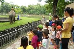 Các địa điểm vui chơi Tết thiếu nhi 1/6 hấp dẫn cho bé ở Hà Nội