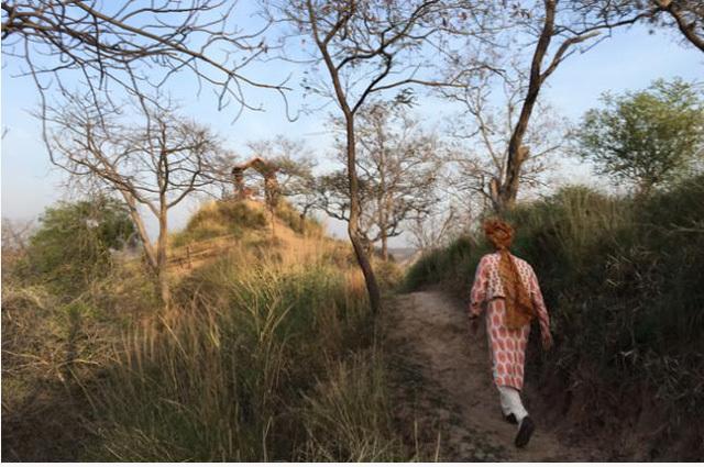 Du lịch, Ấn Độ, du khách
