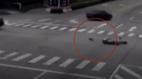 Phản ứng bất ngờ của chú chó khi chủ nhân bị ô tô tông giữa đường