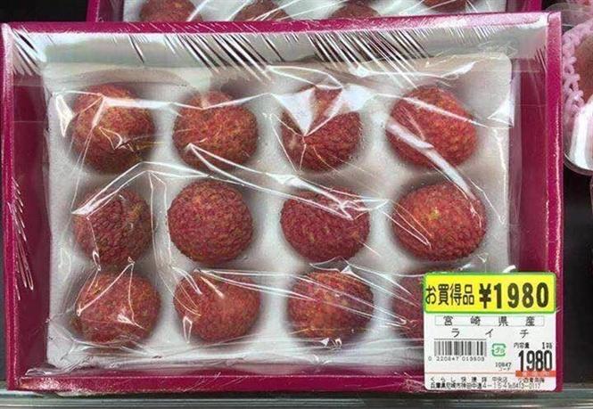 thực phẩm bẩn, cá chình, thương lái Trung Quốc, thịt lợn, nông sản rớt giá,