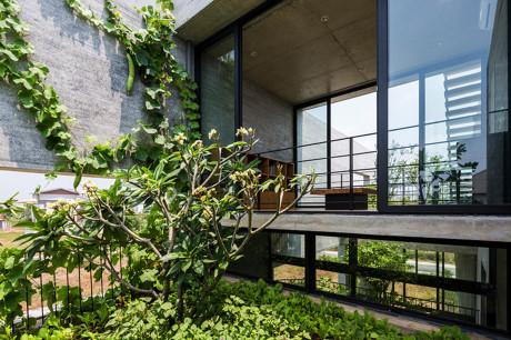 Ngôi nhà như rừng cây xanh mát giữa Sài Gòn