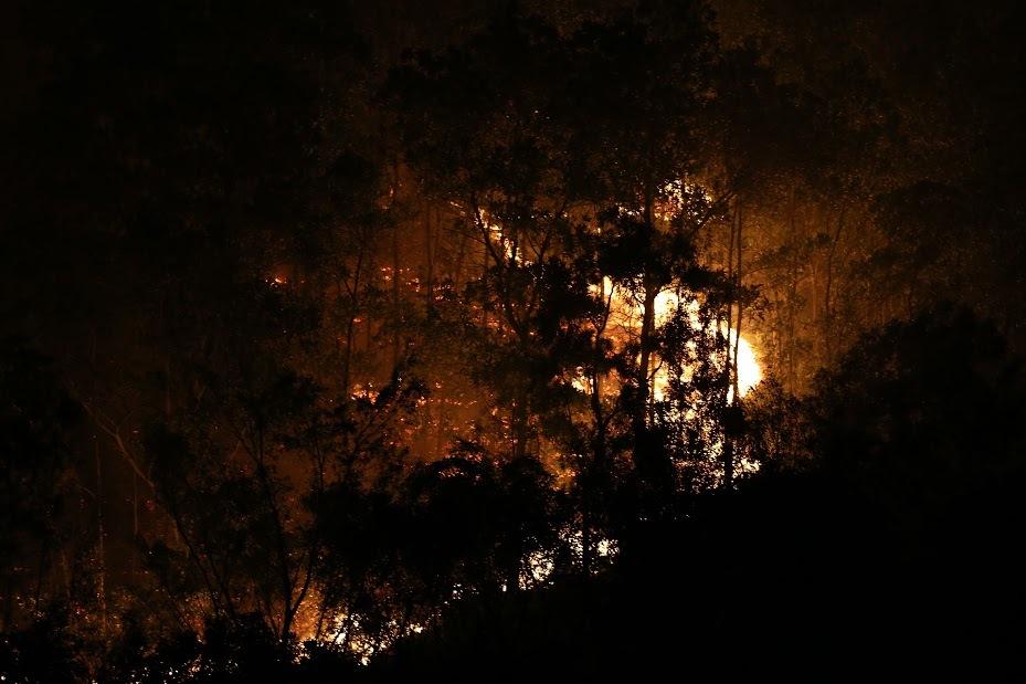 cháy, cháy rừng, cháy rừng phòng hộ, cháy rừng Sóc Sơn