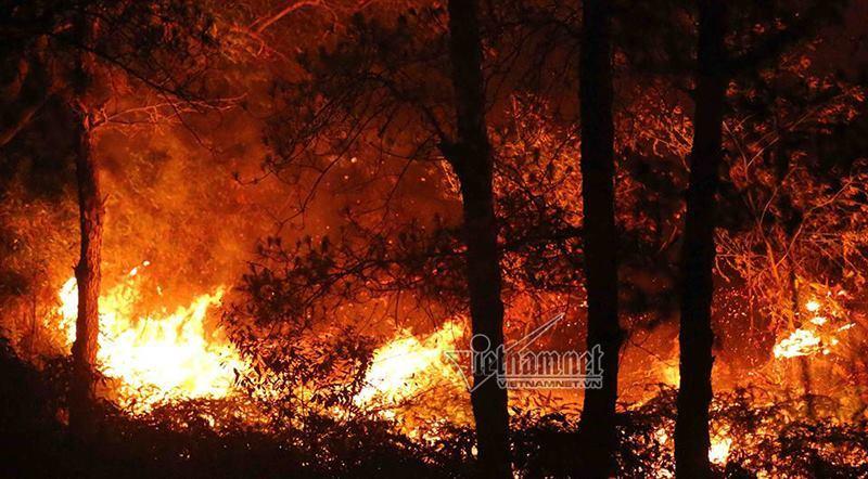 Cháy rừng, Sóc Sơn, Bảo vệ thiên nhiên, Trái đất nóng lên, Hà Nội