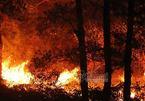 """Cháy rừng lịch sử ở Sóc Sơn và chuyện """"đừng đốt"""""""