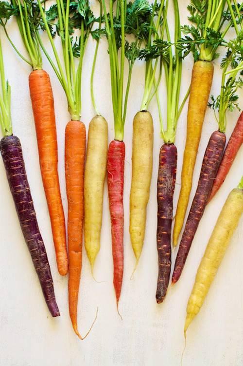 rau quả độc, lạ, cà rốt bảy màu, dưa hấu tí hon