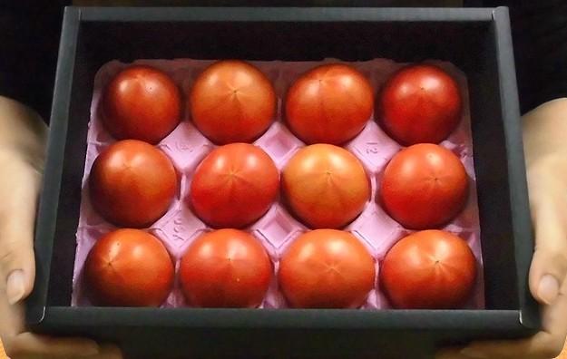 Biếu sếp quả cà chua Hoàng gia Nhật: Đắt nhất thế giới, 1,6 triệu/kg