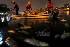 Chủ tịch quận Đống Đa: Cá chết hồ Hoàng Cầu vì quá nắng