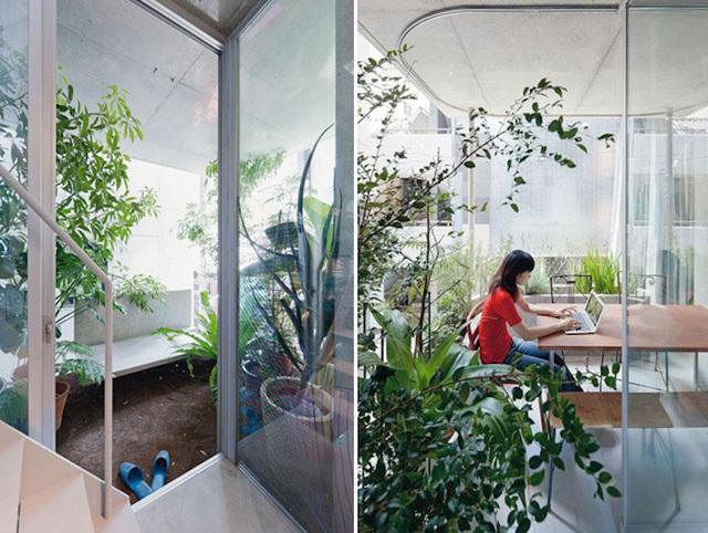 Căn nhà ống có thiết kế xanh mướt, đẹp mãn nhãn ở Nhật