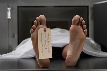 Khoa học bắt đầu hồi sinh người chết