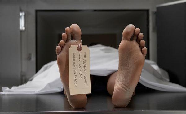 hồi sinh, xác sống, tế bào gốc, người chết