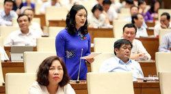 Tranh luận tại kỳ họp thứ 3 của Quốc hội