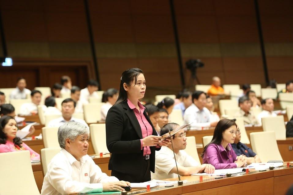 chất vấn,đại biểu quốc hội,quốc hội