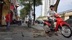 Hà Nội: Lao lên vỉa hè, hàng loạt xe máy bị xử phạt