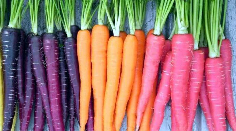 rau củ, thực phẩm, an toàn thực phẩm