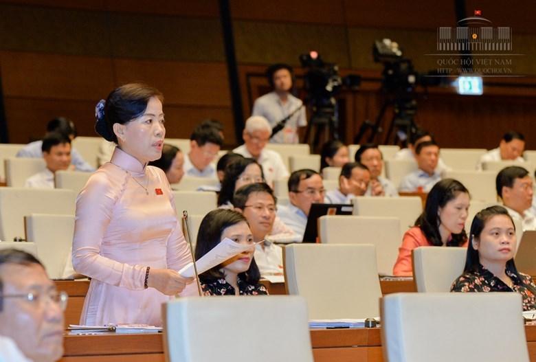 quốc hội, bộ trưởng, chất vấn, Đinh Duy Hòa
