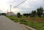 Đại gia 'bỏ chạy', vùng ven TP.HCM hoang tàn sau cơn sốt đất